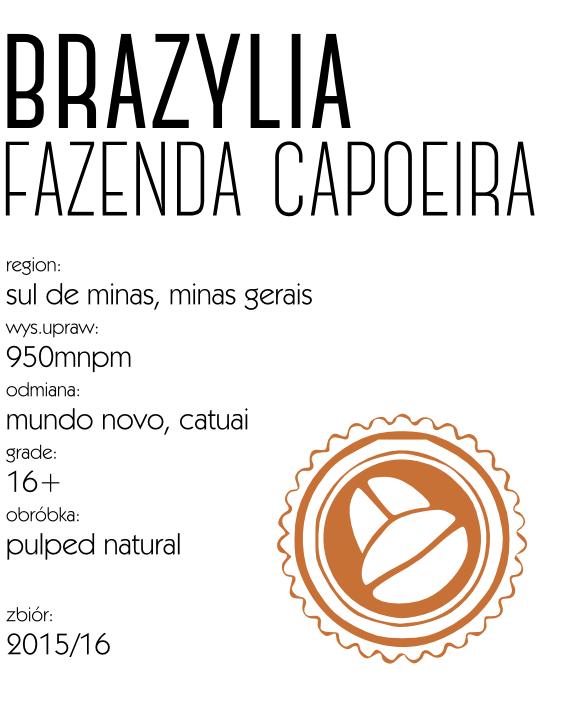 brazylia_espresso_capoeira