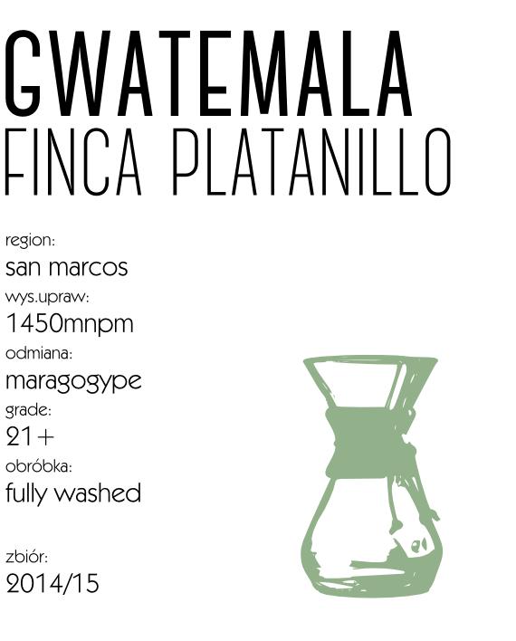 gwatemala_maragogype