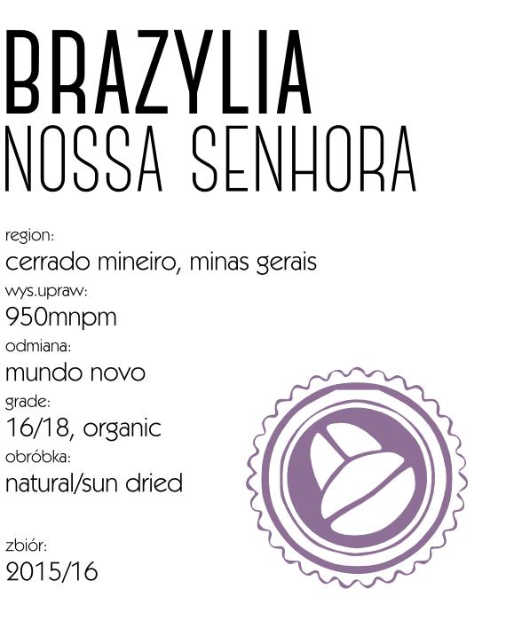 kawa_brazylia