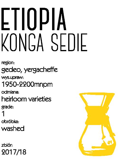 kawa speciality etiopia konga sedie drip